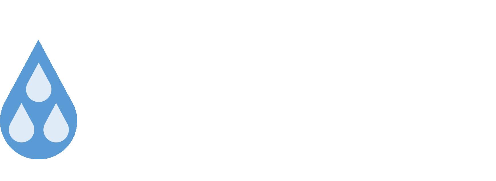 Logo_hvidteskt